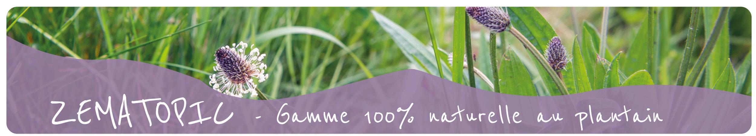 zematopic plantain